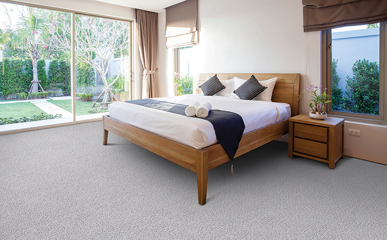 Large bedroom with light grey carpet